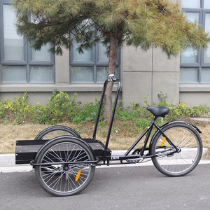 3 wheel passenger bike with 24 inch single speed used for carrying goods cargo bike bicycle tricycle adult tricycle UB 9027PB