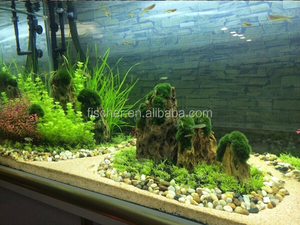 Dragon Fish Tank Dragon Fish Tank Suppliers And Manufacturers At