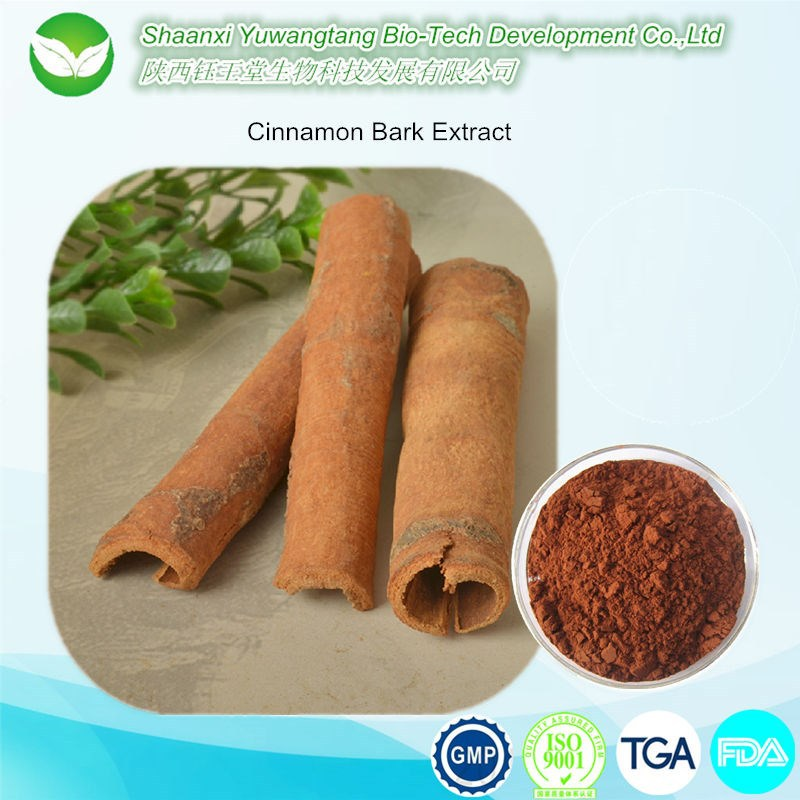 high quality natural cinnamon bark extract powder