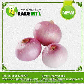 2016 Wholesale Fresh Yellow Onion Export to Dubai