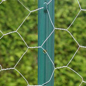Green Color Steel U Channel Posts Grape Stake U Shaped Fencing Post