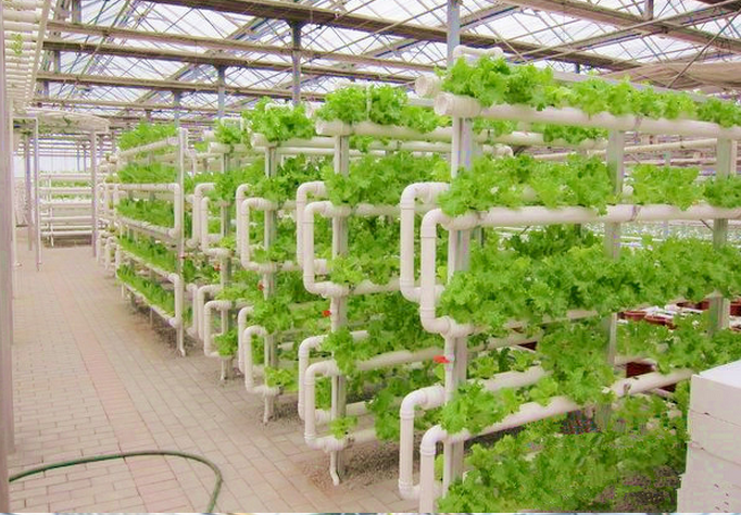 Nft Pvc Vertical Hydroponics Strawberry Lettuce Pipe System View Popular Nft Pvc Vertical