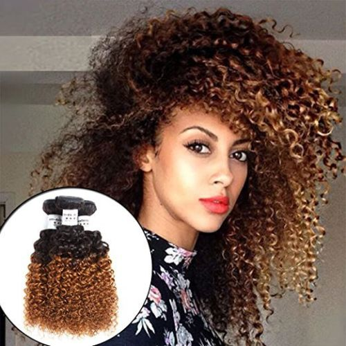 Large stock raw malaysian 1b 4 27 ombre color hair kinky curly weave