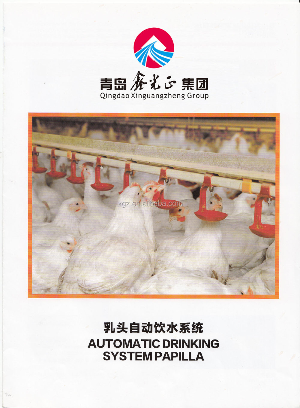 Economical Poultry farm house for broiler layer breeder chicken design