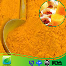Hot sale plant extract sea buckthorn extract powder,holy thorn extract