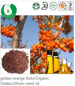 Natural Pure Organic Seabuckthorn Seed Essential Oil