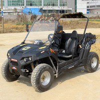 new popular electric UTV for adults