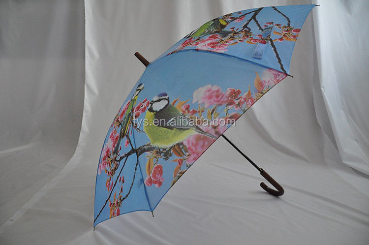 Buy Chinese All Kinds Of Single Layer Fancy Straight Umbrella With Folower Printing