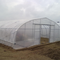 Single-Span Agricultural Tomato Greenhouses