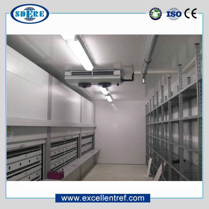 High Quality Poultry Meat Container Freezer Used As A