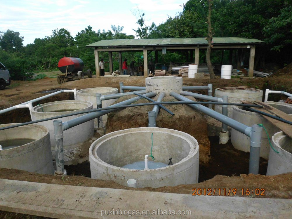 Mini Biogas Plant : M low cost small anaerobic digester for poultry farming