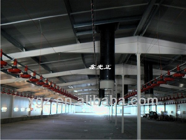 low price advanced automatic chicken feeding system chicken shed for poultry farm