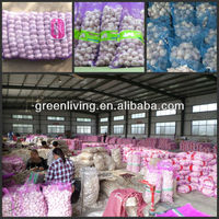 garlic export company China / cheap garlic