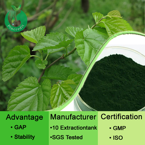 2014 high quality low price chlorophyll unicity/pure chlorophyll powder