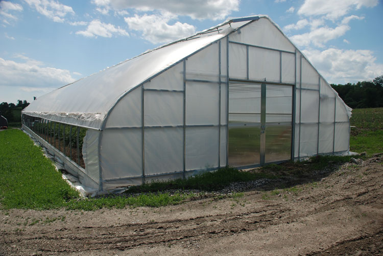 the cheapest agricultural plastic greenhouse film of china - Rimol Greenhouse Of Photos