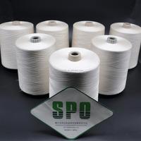 China Manufacturer 60Nm/2 Silk Polyester Carpet Yarn For Iran Market