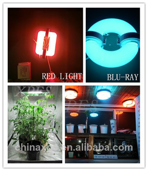 wholesale abibaba magnetic induction fluorescent grow light lowes  sc 1 st  Alibaba & Wholesale Abibaba Magnetic Induction Fluorescent Grow Light Lowes ... azcodes.com