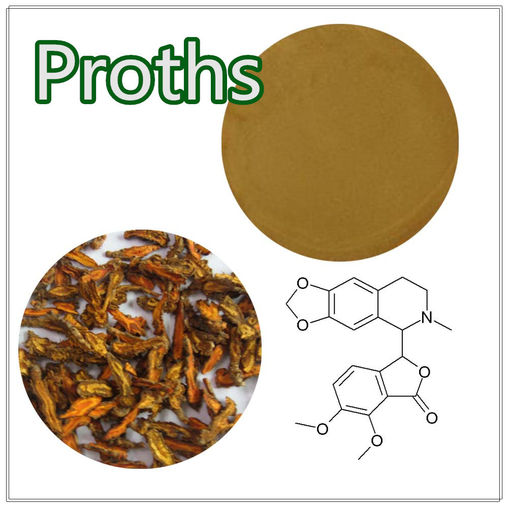 Free sample Coptis Root Extract/Coptis Root Extract powder/Coptis chinensis p.e.