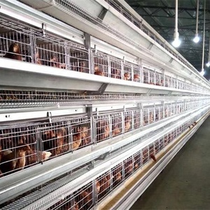 Poultry Farm Galvanized H-type 6 Tiers quail Equipment Breeding Cage for Sale