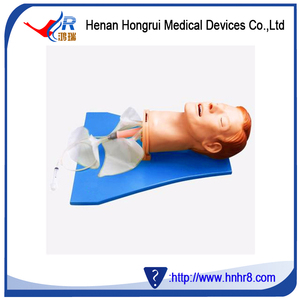 Airway Management Model Wholesale, Management Suppliers - Alibaba