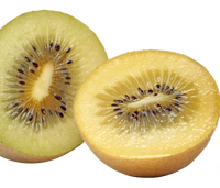 import kiwi fruit