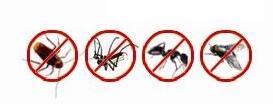 Luna stella insect killer spary/corkroach assassino/zanzara spruzzo