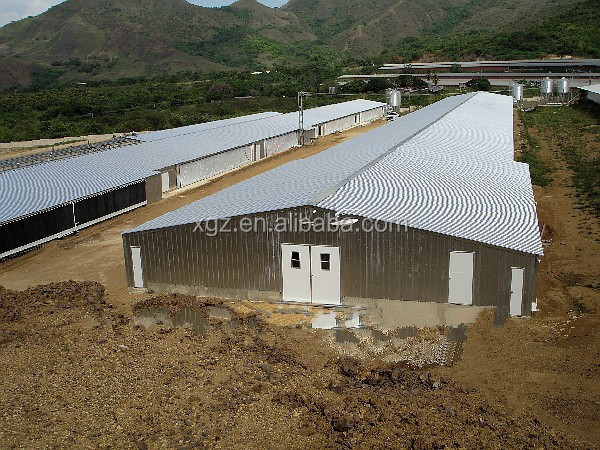 10000 broiler birds poultry house with full automatic chicken equipment