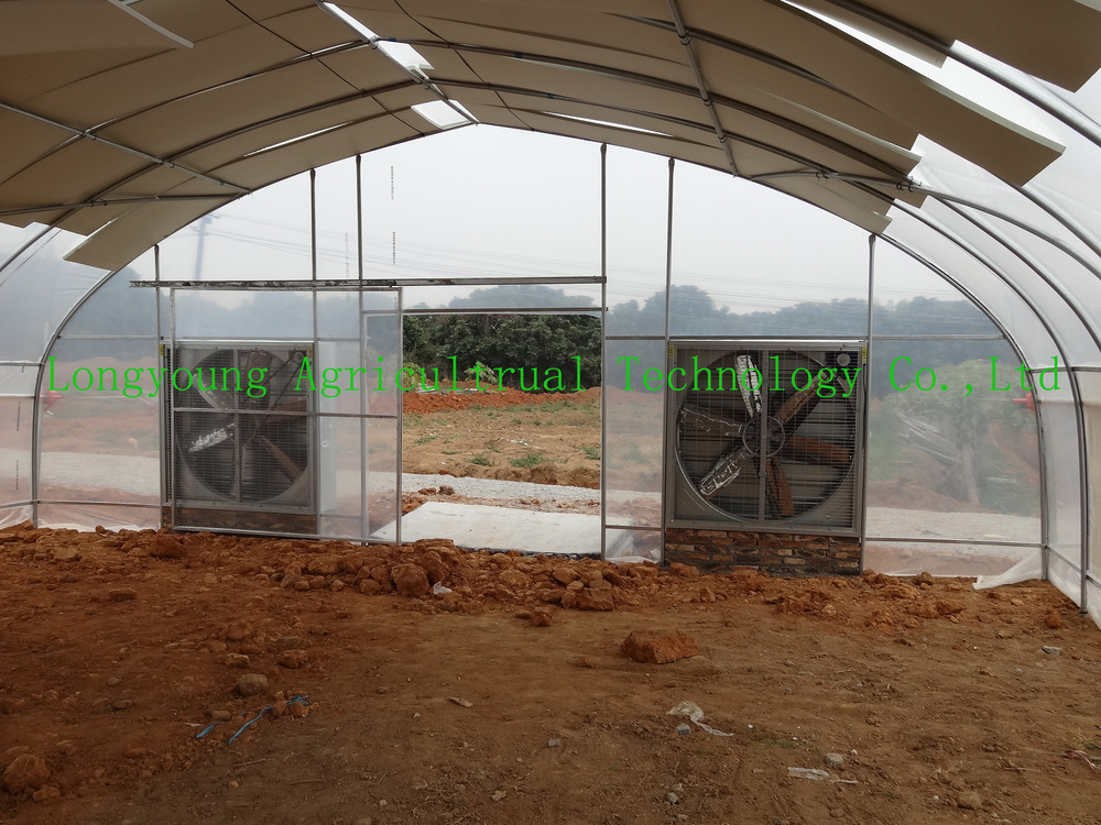 2015 New Greenhouse With Cooling System Buy Greenhouse