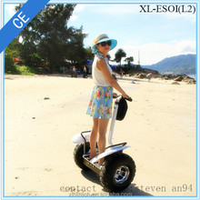 High quality electric chariot 2 wheel stand up electric scooter with with incredible riding experience