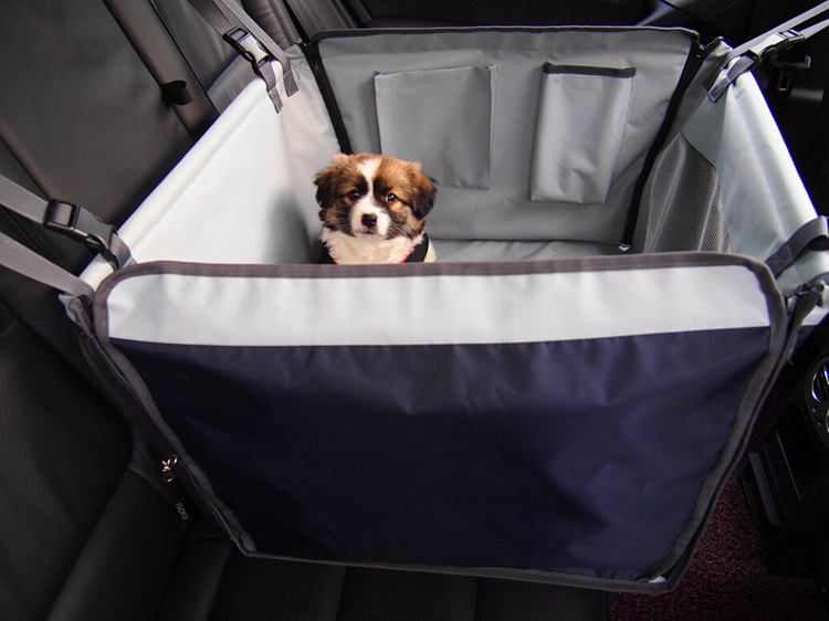 Car Dog Seat Cover Bench Seat Pet Car Protector Single Seat ...