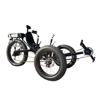 500watt 48v 16ah Lithium Battery Adult Tricycle, 7 Speed Electric Assisted Fat Tire Recumbent Trike