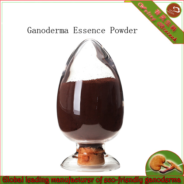 Red Mushroom Reishi Essence Powder