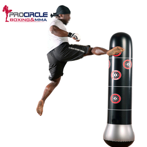 Hot Selling Cheap Free Standing Gym Boxing Training Equipment