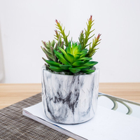 new design cheap wholesale real touch assorted artificial succulent plants grass with concrete Pot for home garden decoration