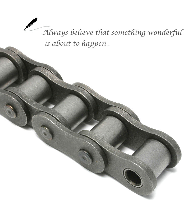 Pruduct Name : roller chain manufacturersroller professional chain ansi 240