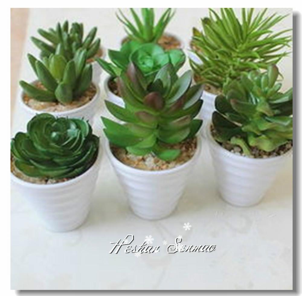 Tipo de ornamento decoraci n falsos plantas suculentas - Plantas tropicales interior ...
