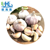/product-detail/factory-supply-high-quality-fresh-natural-garlic-for-sale-60751535274.html