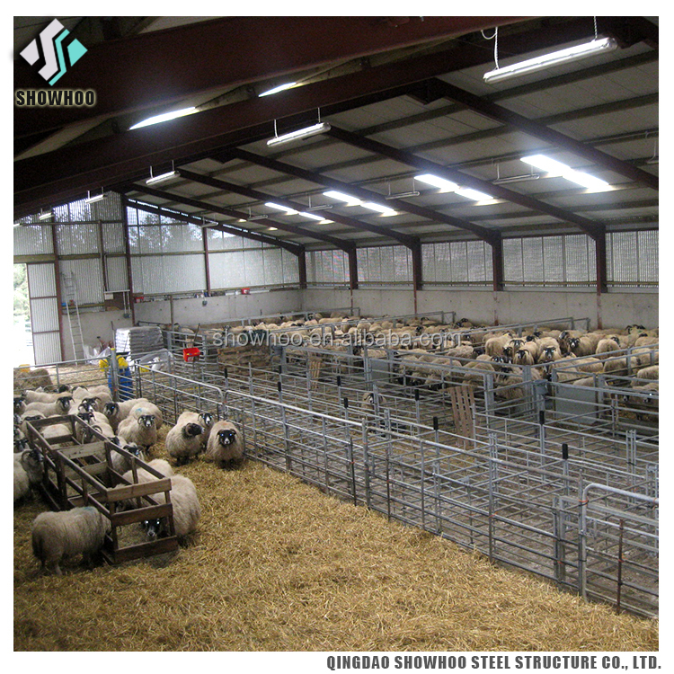 Steel H Beam Industrial Goat And Sheep Farming Design