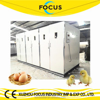 Focus industry group 5 or 6 doors incubator with capacity of 30000 eggs