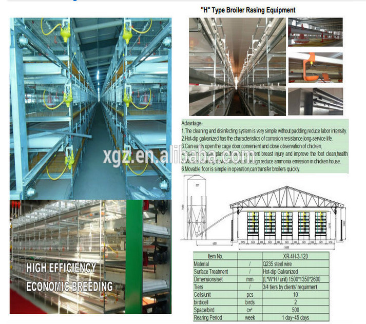 Agricultural equipment commercial egg chicken house design for layers