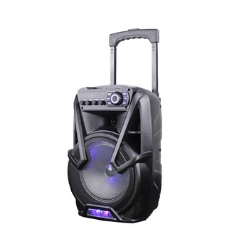 "2020 Top ranking products of 8"" trolley active portable speaker"