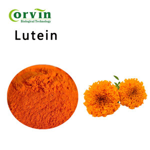 Super Quality Marigold Flower Extract Lutein 5% to 90%