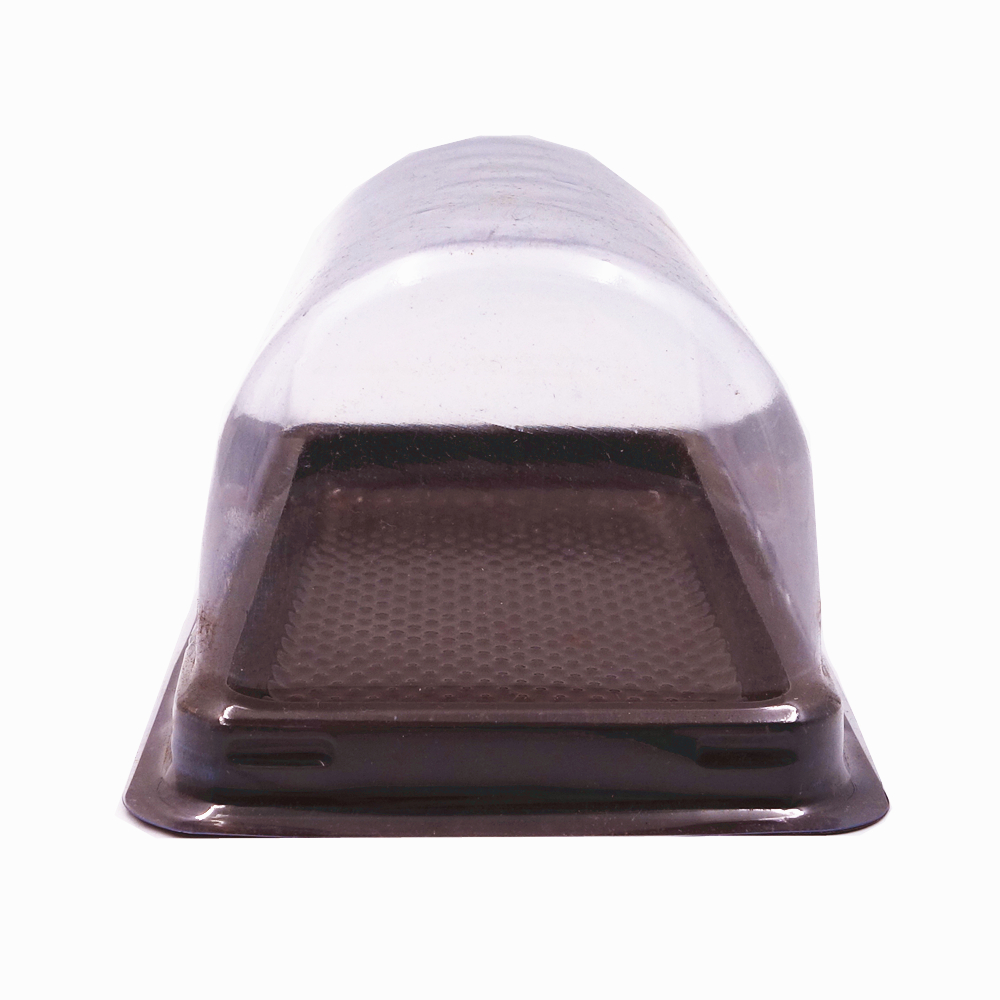 Wegwerp Clear PET Cake Plastic Lade Box