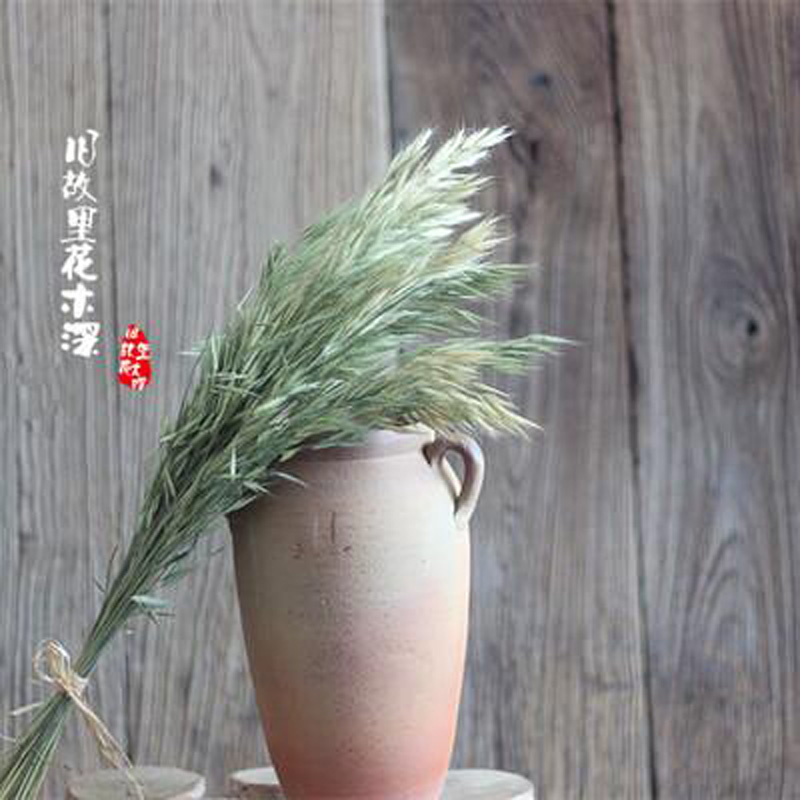 New Design Natural Hay Dried Flowers Wedding Home Table Decorations Simulation Flower Jiugu