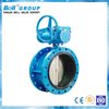 Ductile Iron DN250 Flanged Gear Operator Butterfly Valve