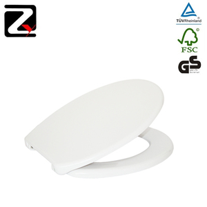 Admirable Professional White Folding Wall Mounted Toilet Seat Ocoug Best Dining Table And Chair Ideas Images Ocougorg