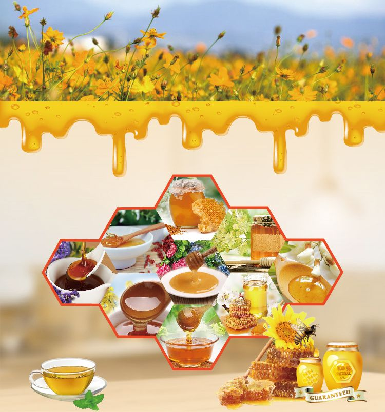 HACCP Certification Manuka New Zealand honey