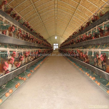 Steel Structure Low Cost Chicken Layer House Shed Poultry For Broilers  Design - Buy Chicken Layer House Shed Poultry For Broilers Design,Steel
