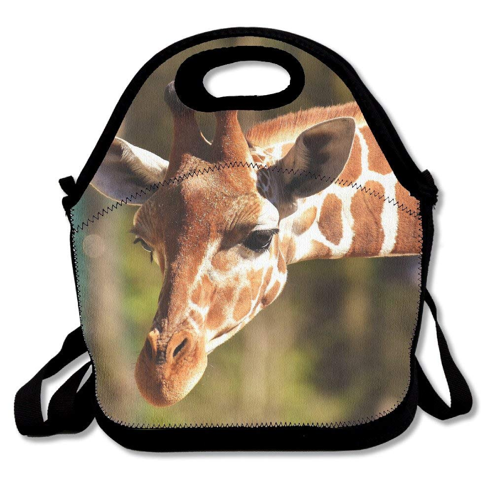 171e06541a Get Quotations · Cat Insulated Lunch Bag Lunch Tote Bag Travel School  Picnic Lunch Box For Men & Women