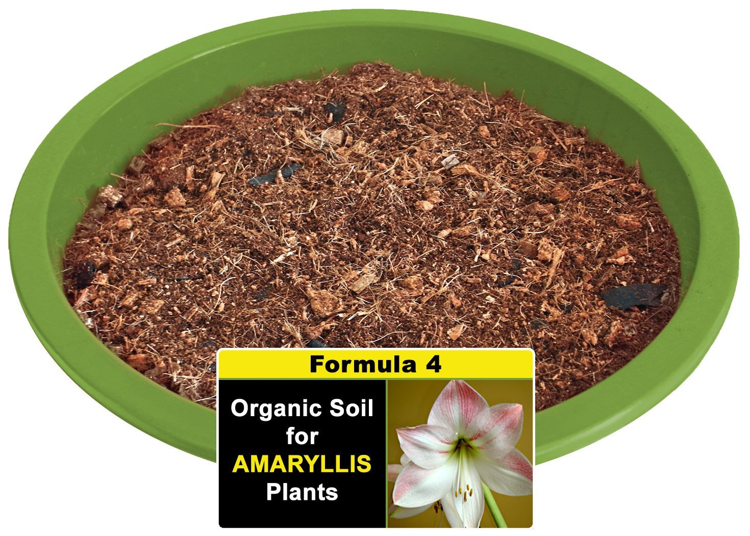 Get Quotations Smiling Worm 5 Quarts Organic Potting Mix With Charcoal For Amaryllis Hippeastrum Houseplant Soil